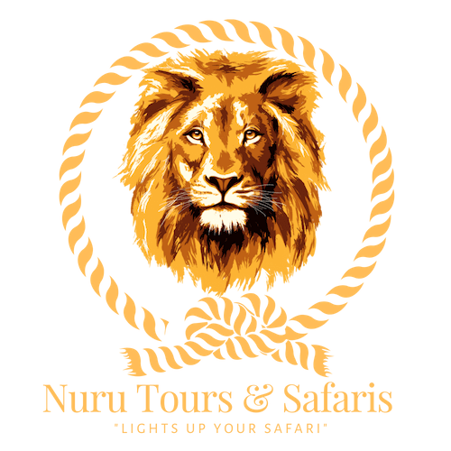 Nuru Tours & safaris