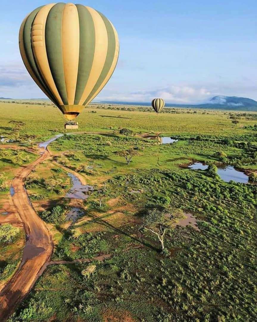 baloon safari serengeti tanzania safari migration