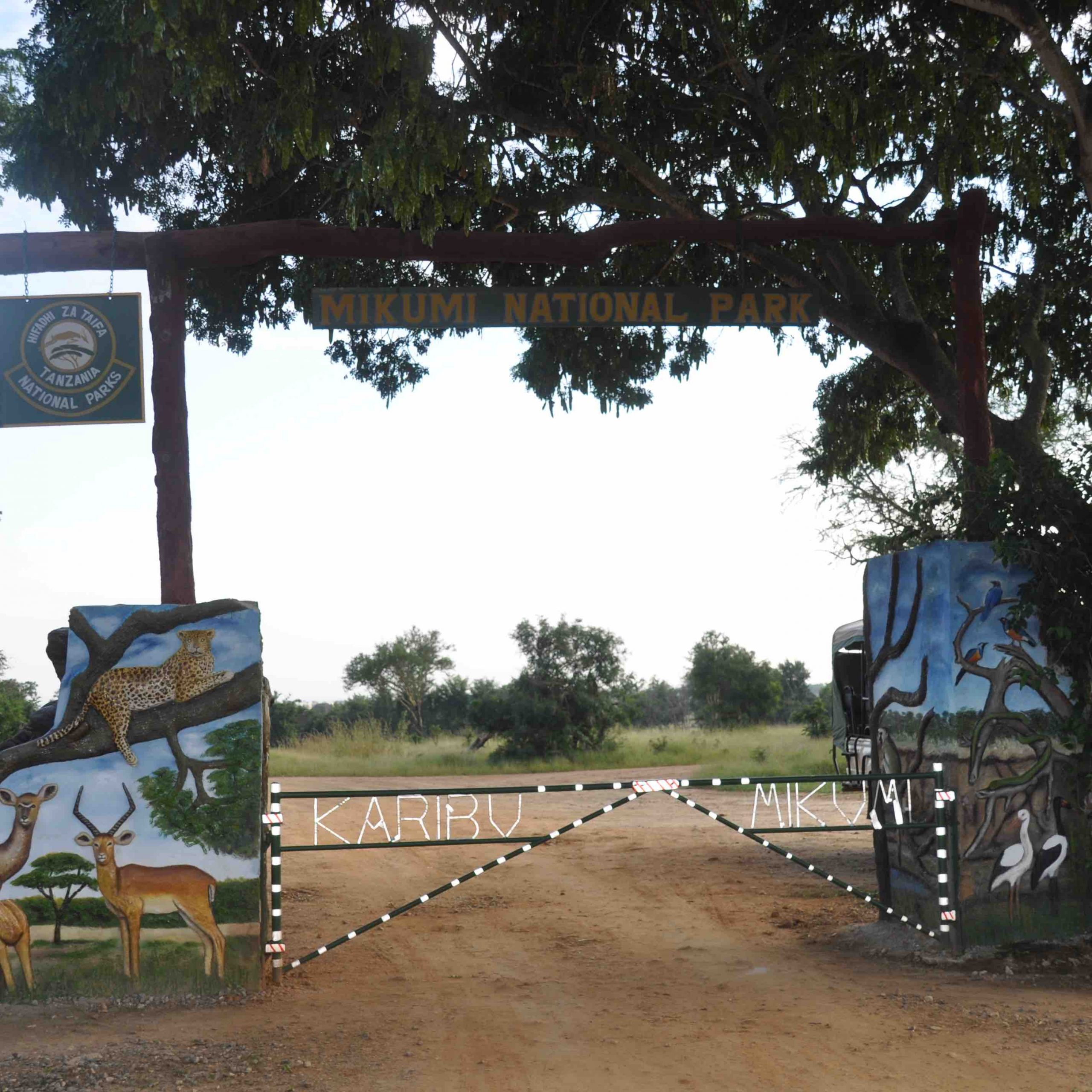 mikumi entrance gate