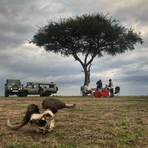 6 Days Tanzania Lodge Safari