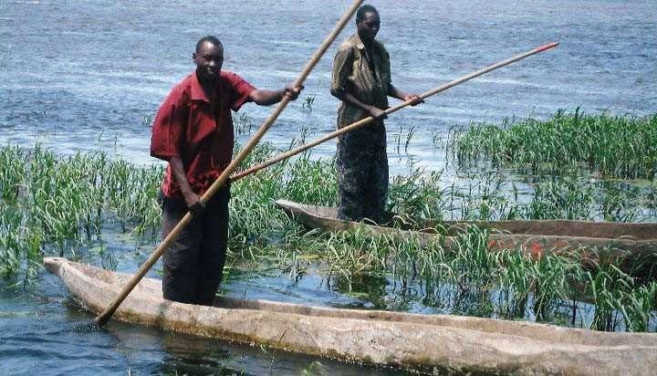 Great Zambesi river zambia highlights (7)