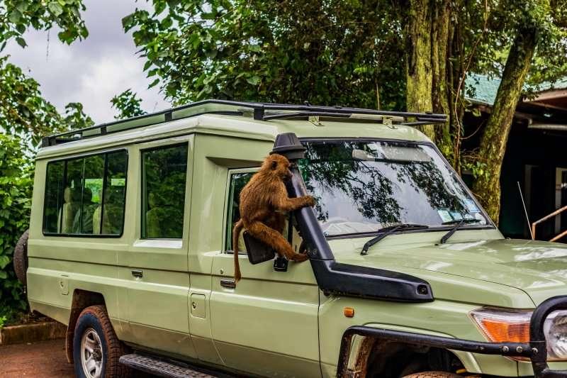 Lodoare Gate, Ngorongoro Crater