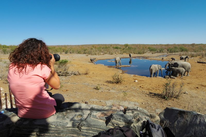 Woman takes pictures of a group of elephants at a waterhole, in Etosha Nat. Park. Namibia