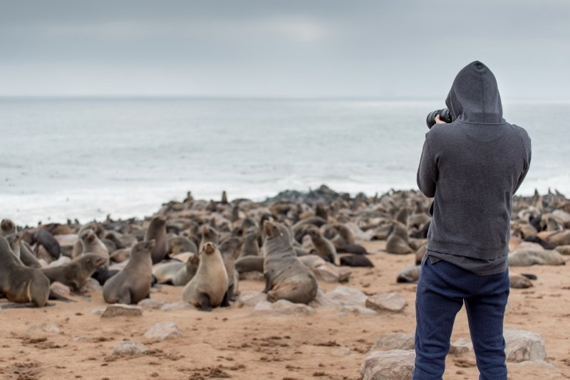 Young male photographer in hoody jacket standing over ten thousands fur seals in Cape Cross, Skeleton Coast National Park, Namibia