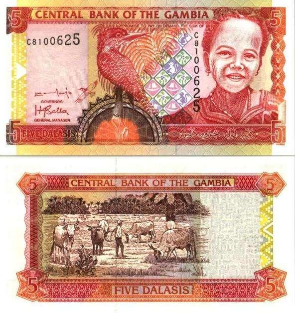 dalasi banknotes gambia money (2)