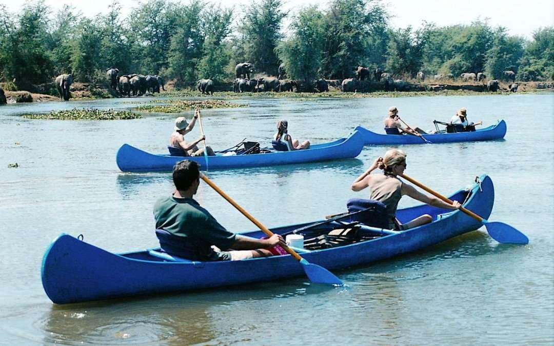 Day 2:Overnight Canoe Safari – Lower Zambezi